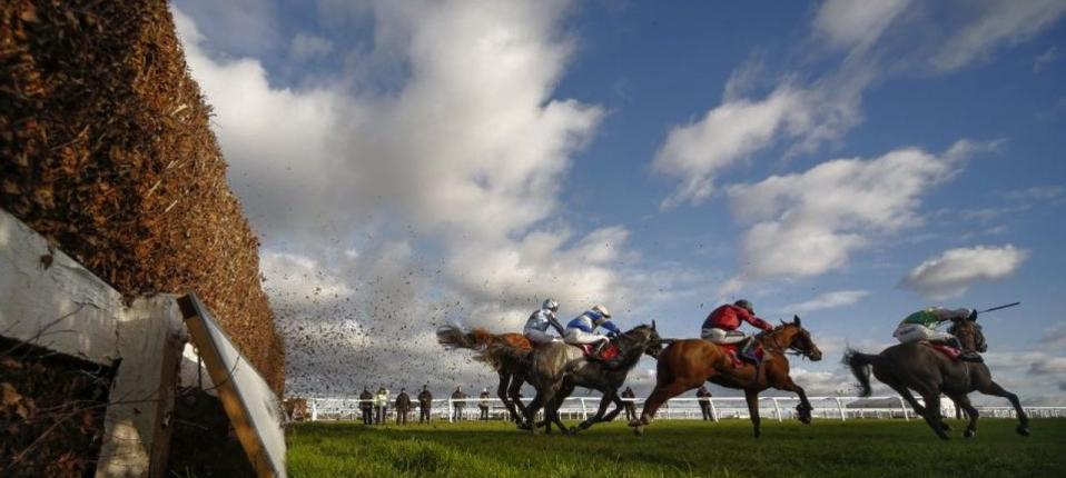 profitable horse racing